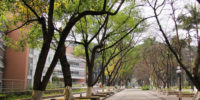 Guangdong University of Foreign Studies1